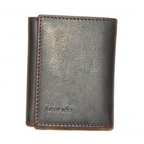 1091SILBRN TRIFOLD WALLET COIN